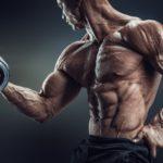 Węglowodany, tkanka tłuszczowa oraz insulina