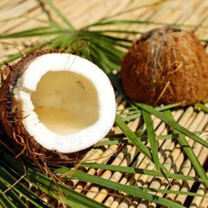 Przyswajalność oleju kokosowego